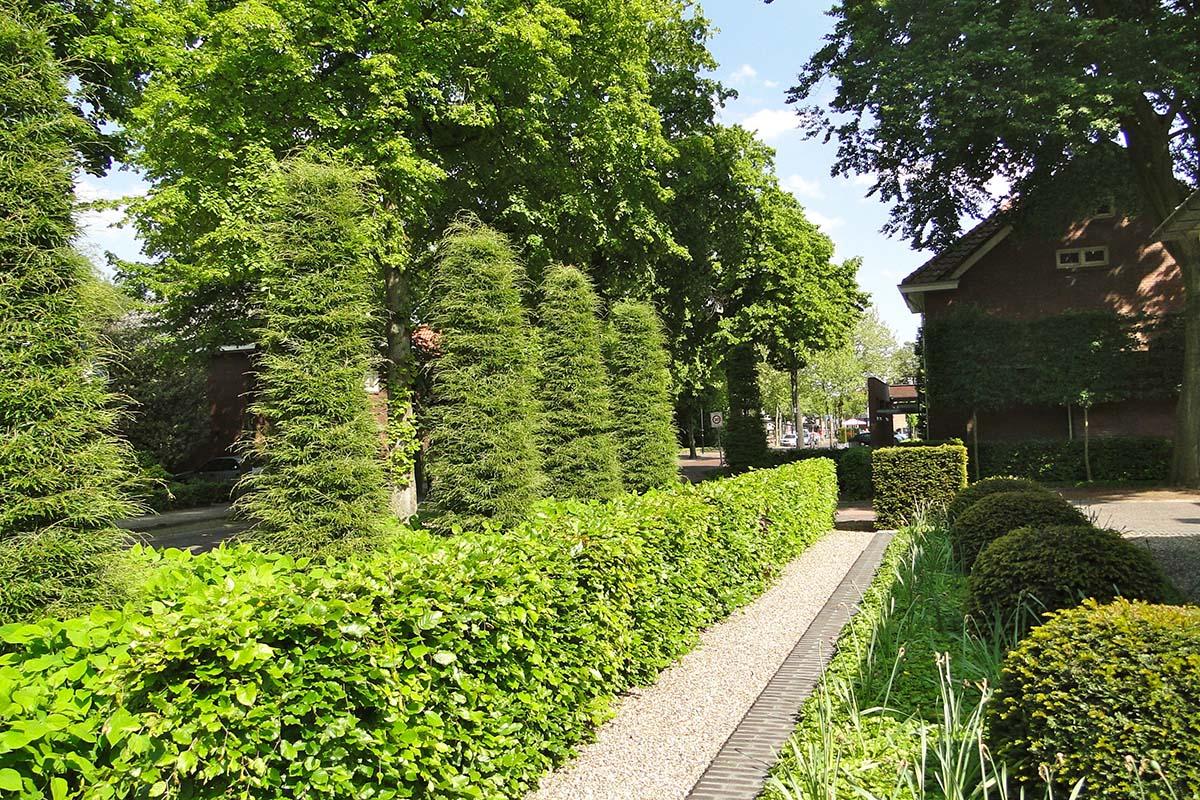 tuinontwerp eindhoven fons linders tuinmeesters
